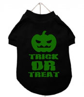chihuahua clothes Halloween trick or treat pumpkin shirt