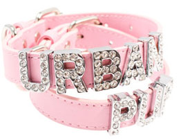 a customized pink chihuahua collar