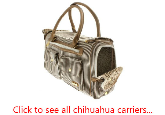 visit all chihuahua carriers at the Chihuahua Store