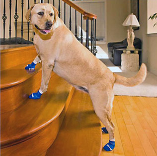 Non Slip Shoes For Dogs Uk