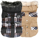 chihuahua-coats-for-boy-chihuahuas